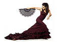 Flamenco Heart